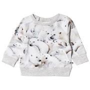 Molo Elsa T-Shirt Polar Bear Jersey 68 cm (4-6 mdr)