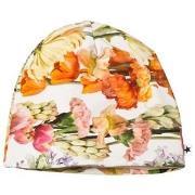 Molo Nedine Hat Rainbow Bloom 3-6 mdr